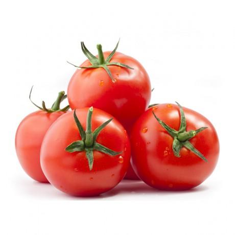 Celery (sold per kg) suppliers